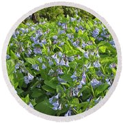 A Bed Of Bluebells Round Beach Towel