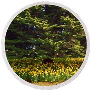 A Bed Of Narcissus Round Beach Towel