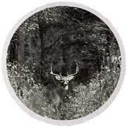 A Big Buck In Rut Round Beach Towel