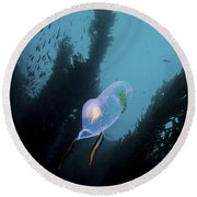 A Bioluminescent Tunicate, Catalina Round Beach Towel