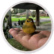 A Bird In The Hand Round Beach Towel