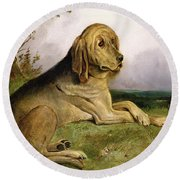 A Bloodhound In A Landscape Round Beach Towel