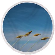 A Blustery Day Round Beach Towel