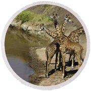 A Bouquet Of Giraffes Round Beach Towel