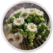 A Bouquet Of Saguaro Blossoms Round Beach Towel