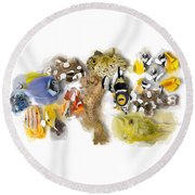 A Bunch Of Colorful Fish No 05 Round Beach Towel