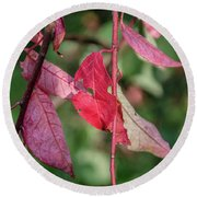A Bunch Of Red Leaves Round Beach Towel
