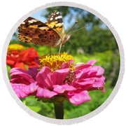 A Butterfly On The Pink Zinnia Round Beach Towel