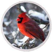 A Cardinal Day... Round Beach Towel