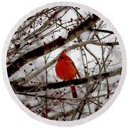 A Cardinal In Winter Round Beach Towel