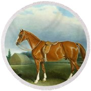A Chestnut Hunter And A Spaniel By Farm Buildings  Round Beach Towel