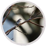 A Chipping Sparrow Round Beach Towel