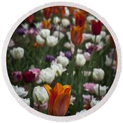 A Cluster Of Tulips Round Beach Towel