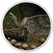 A Compsognathus Prepares To Swallow Round Beach Towel