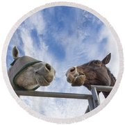 A Conversation Between Two Horses Round Beach Towel