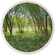 A Country Morning Round Beach Towel