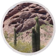 A Couple Of Cacti In Phoenix Round Beach Towel