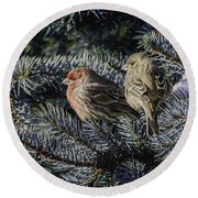 A Couple Of House Finch Round Beach Towel by LeeAnn McLaneGoetz McLaneGoetzStudioLLCcom