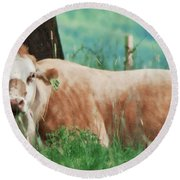 A Cow's Tale - Lazy Day Round Beach Towel