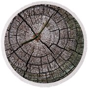 A Cut Above - Patterns Of A Tree Trunk Sliced Across Round Beach Towel