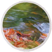 Flowing Water Fall Leaves Closeup Round Beach Towel