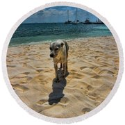 A Dog's Life Round Beach Towel