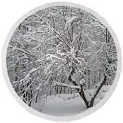 A Dogwood Sleeps While The Snow Falls Round Beach Towel