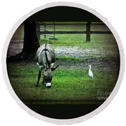 A Donkey And His Bird Round Beach Towel