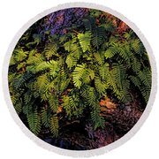 A Fern Botanical By H H Photography Of Florida Round Beach Towel