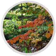 A Flame In The Forest Round Beach Towel