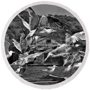 A Flock Of Seagulls Flying High To Summer Sky Round Beach Towel