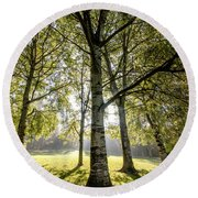 a Forest part 1 Round Beach Towel