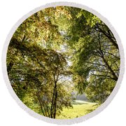 a Forest part 2 Round Beach Towel