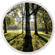a Forest part 3 Round Beach Towel