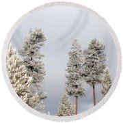 A Frosty Morning 2 Round Beach Towel