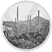 A Gathering Of Cacti Round Beach Towel