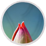 A Glimpse Of A Tulip Round Beach Towel