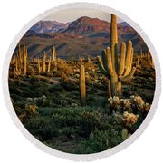 A Golden Sonoran Evening  Round Beach Towel