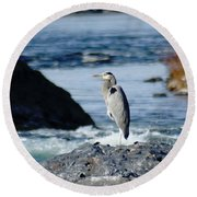 A Great Blue Heron At The Spokane River Round Beach Towel