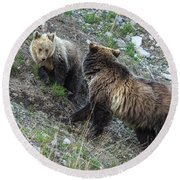 A Grizzly Moment Round Beach Towel