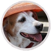 A Hat For Buddy Round Beach Towel