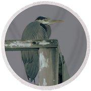 A Heron On Watch  Round Beach Towel