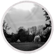 A Horse In Light Round Beach Towel