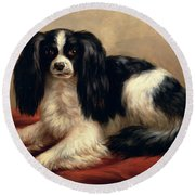 A King Charles Spaniel Seated On A Red Cushion Round Beach Towel