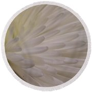 A Light Within Petals Round Beach Towel