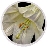 A Lily For Easter Round Beach Towel