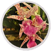 A Living Orchid Looks Like Animal Print Doesnt It So Beautiful Round Beach Towel