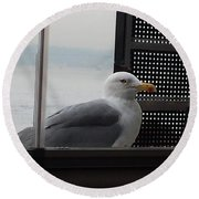 A Looking Seagull Round Beach Towel