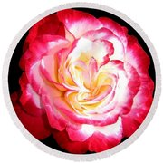 A Magnificent Rose Round Beach Towel
