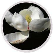 A Magnolia Flower Round Beach Towel